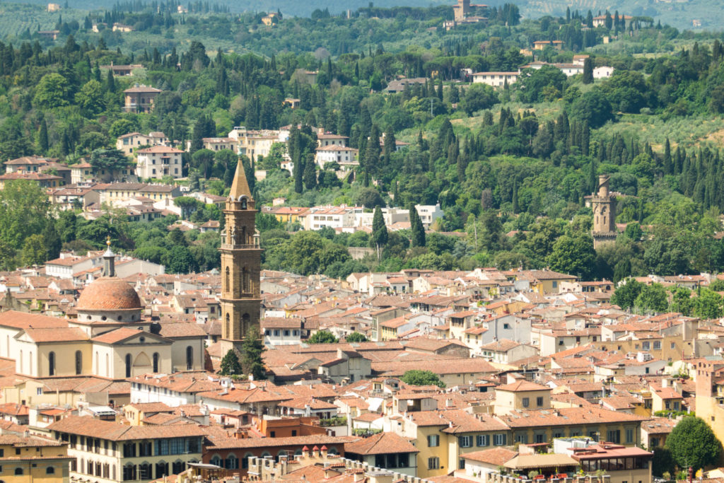 View from Duomo Dome in Florence