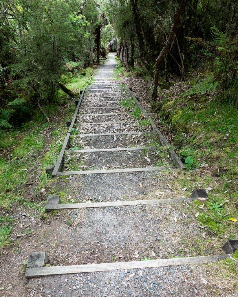 Steps down From Mt Haszard, Waimangu Volcanic Valley